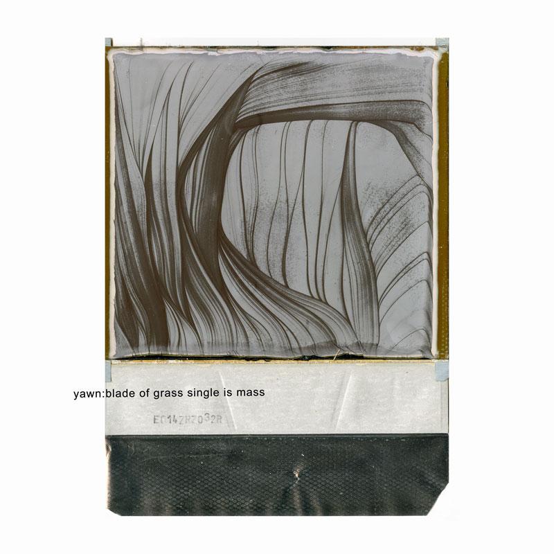 Yawn, Blade of Grass, Single is Mass Album Art