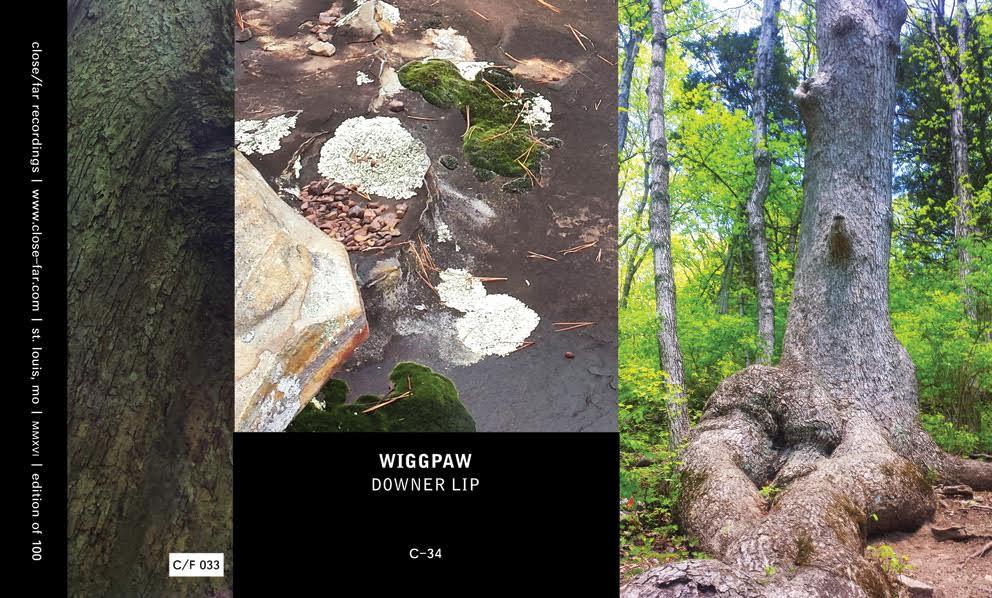 Wiggpaw